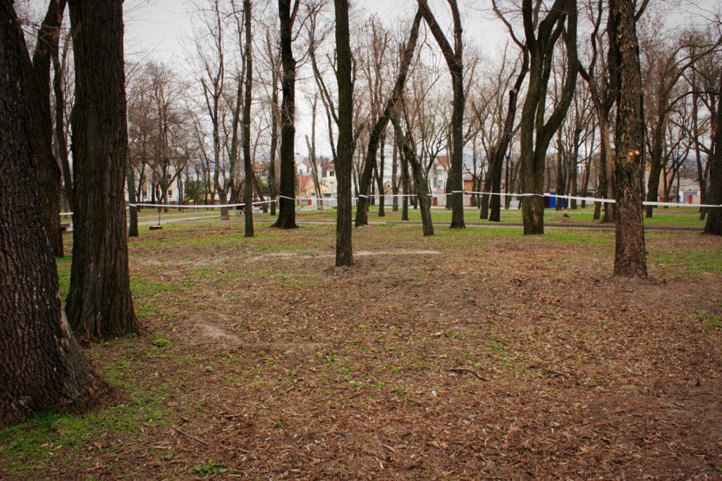 Место будущих раскопок, где будут искать могилу Александра Поля