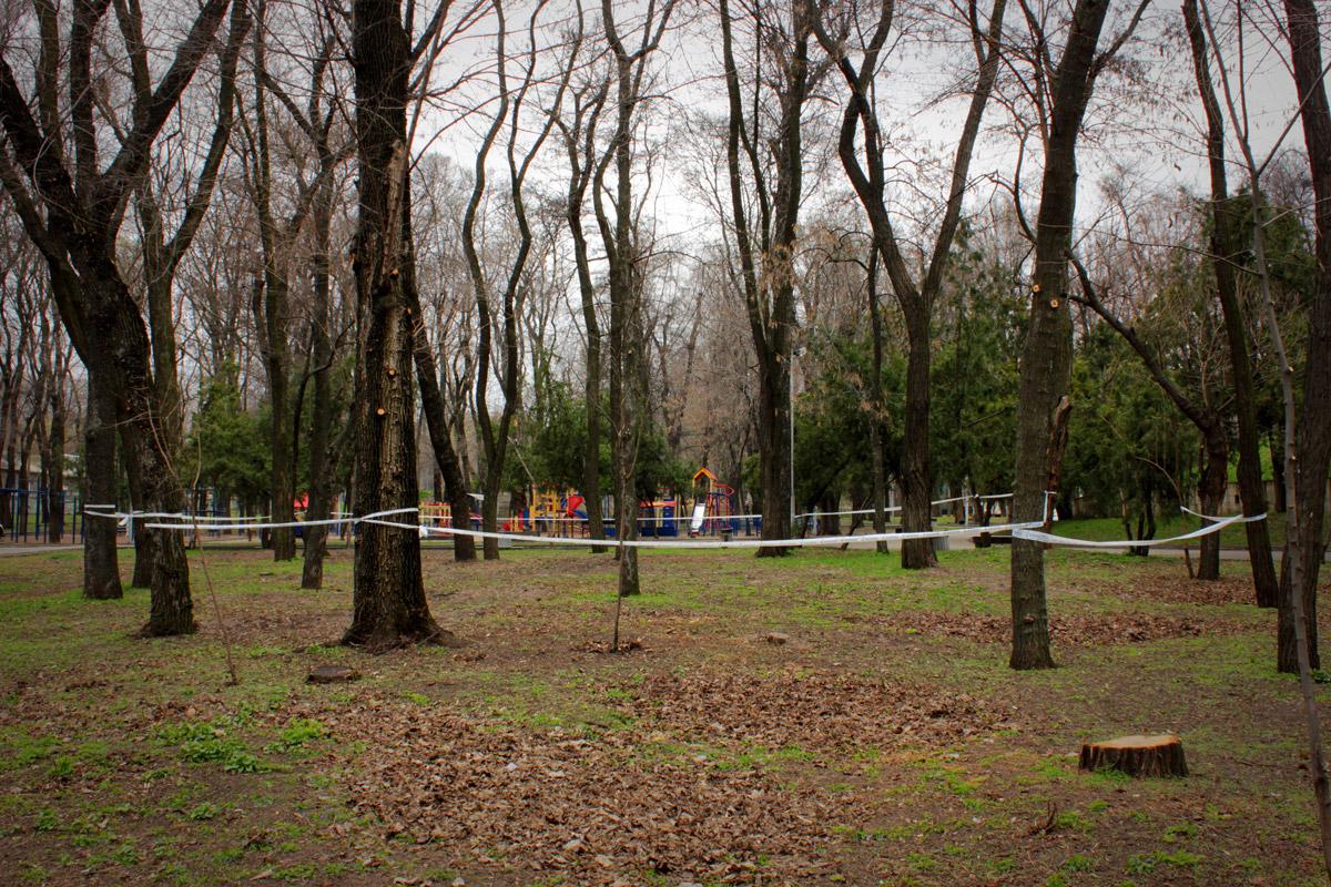 У Севастопольському парку знайшли рештки Олександра Поля