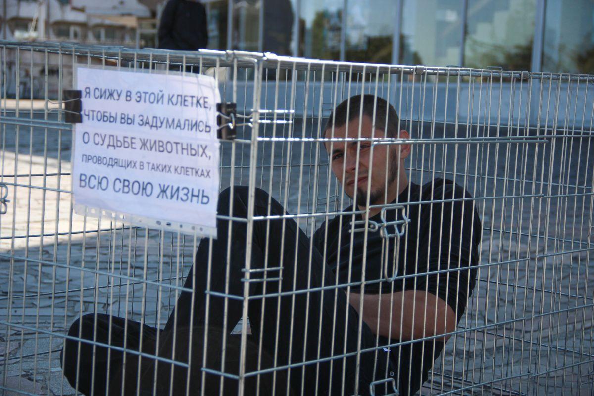 Люди в супермаркеті: біля Пасажу влаштують перформанс на захист тварин