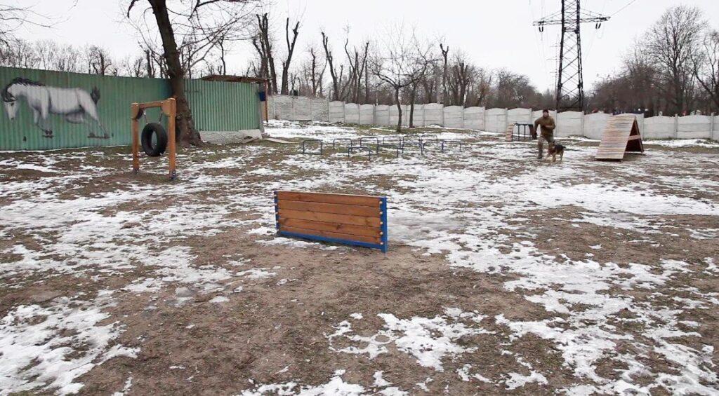 Де гуляти з собакою у Дніпрі: добірка обладнаних майданчиків - 2 зображення