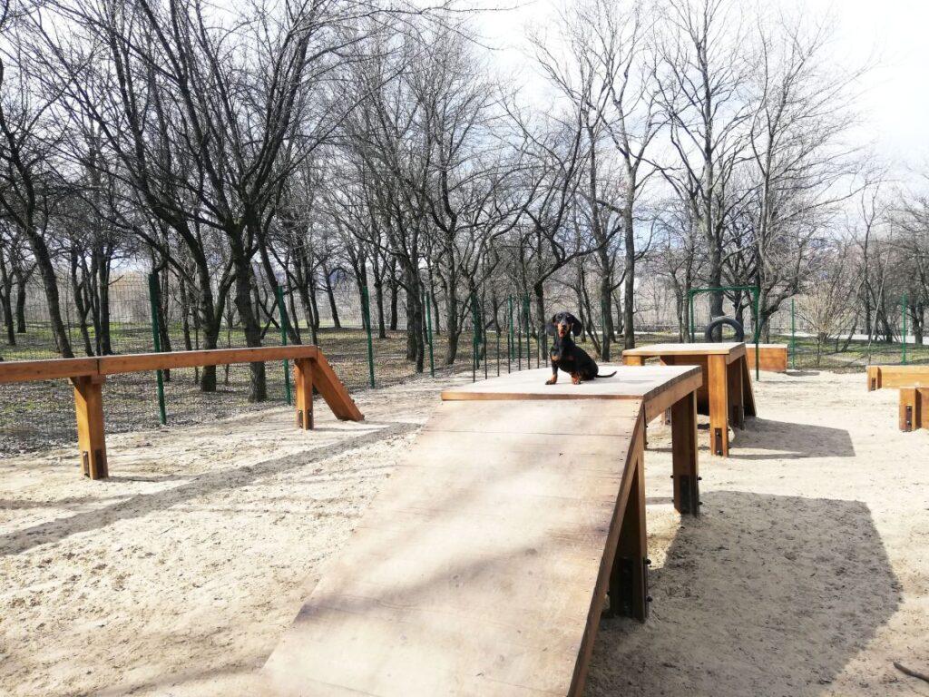 Де гуляти з собакою у Дніпрі: добірка обладнаних майданчиків - 4 зображення