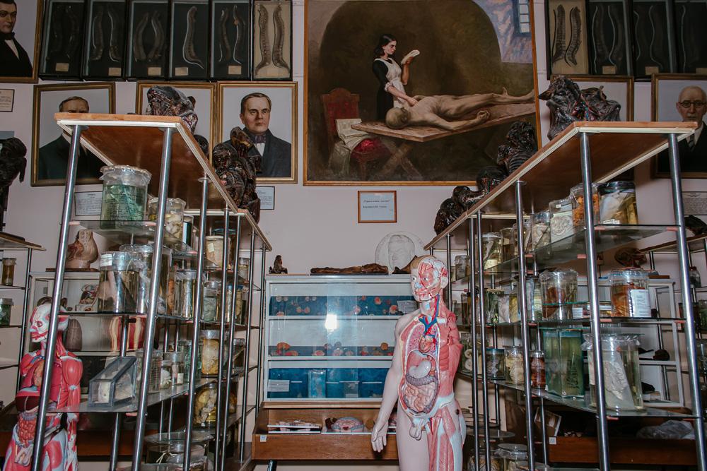Не для слабонервных: музей медуниверситета - 4 зображення