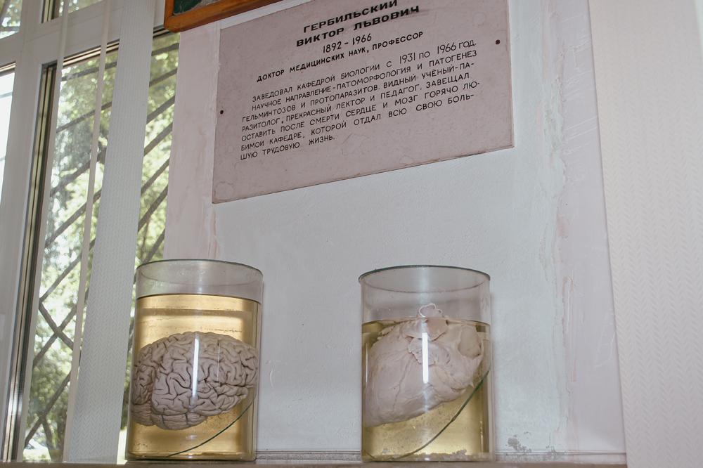 Не для слабонервных: музей медуниверситета - 11 зображення